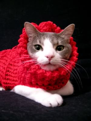Cat Sweater Loomahat